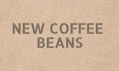 New Green Coffee Beans