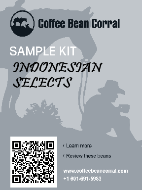Indonesian Selects