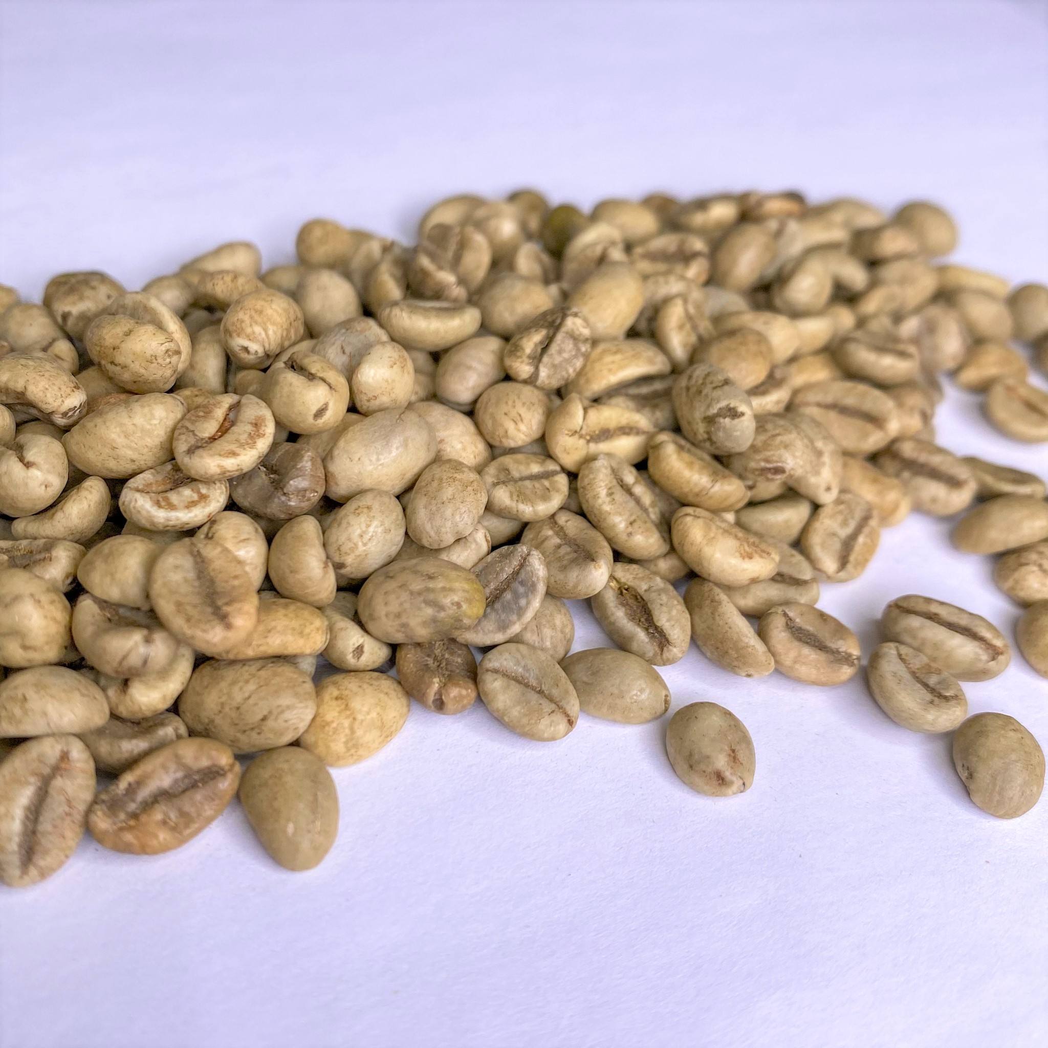 Vietnam Robusta Washed
