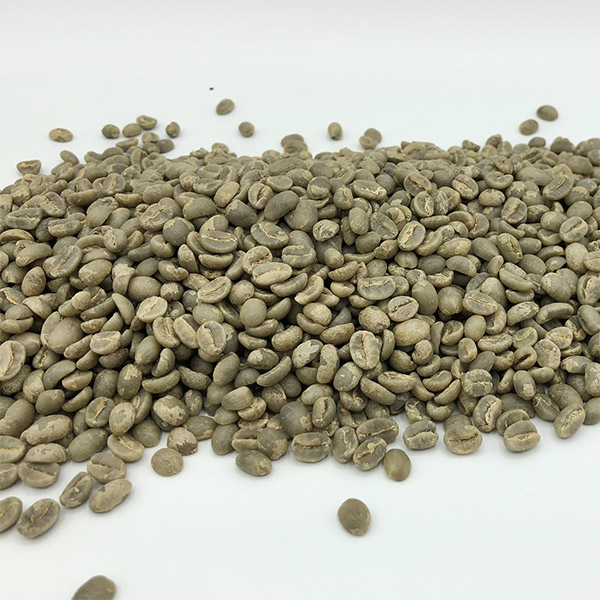 "Burundi Nkanda Procasta""Top Lot"""