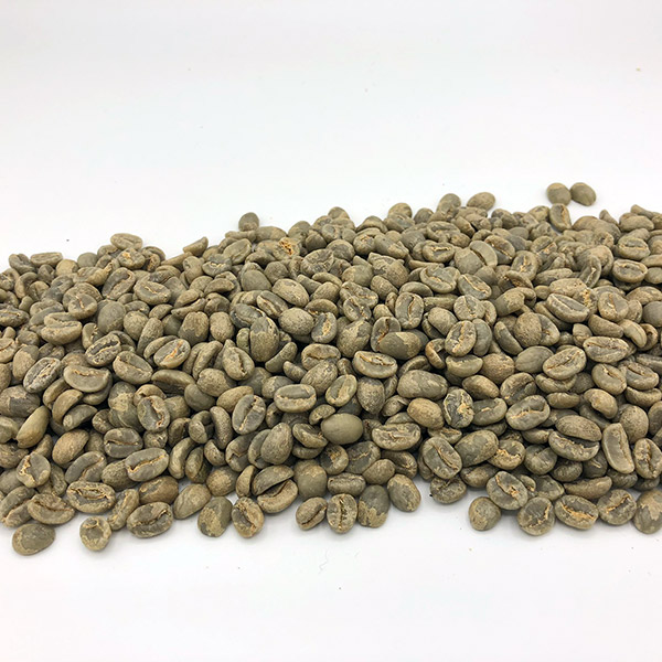 Kenya Kijango AB Green Coffee Beans