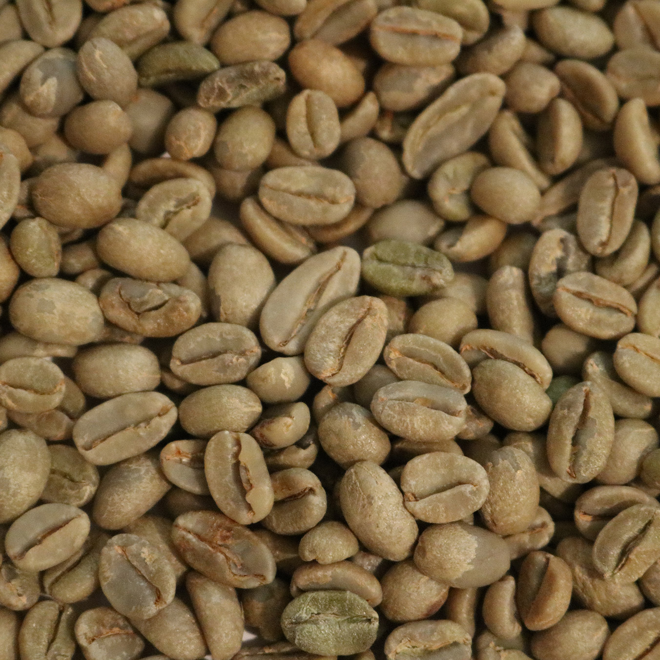 Ethiopian Yirgacheffe Misty Valley Natural Coffee Bean