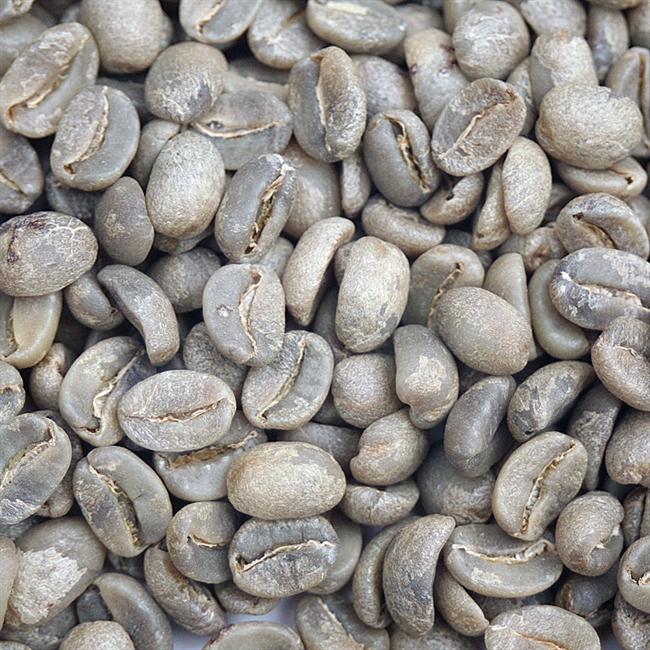 Haitian Blue Organic Green Coffee Beans Coffee Bean Corral